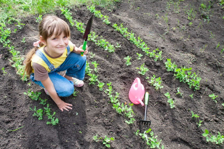 Teens Mental Health With Gardening