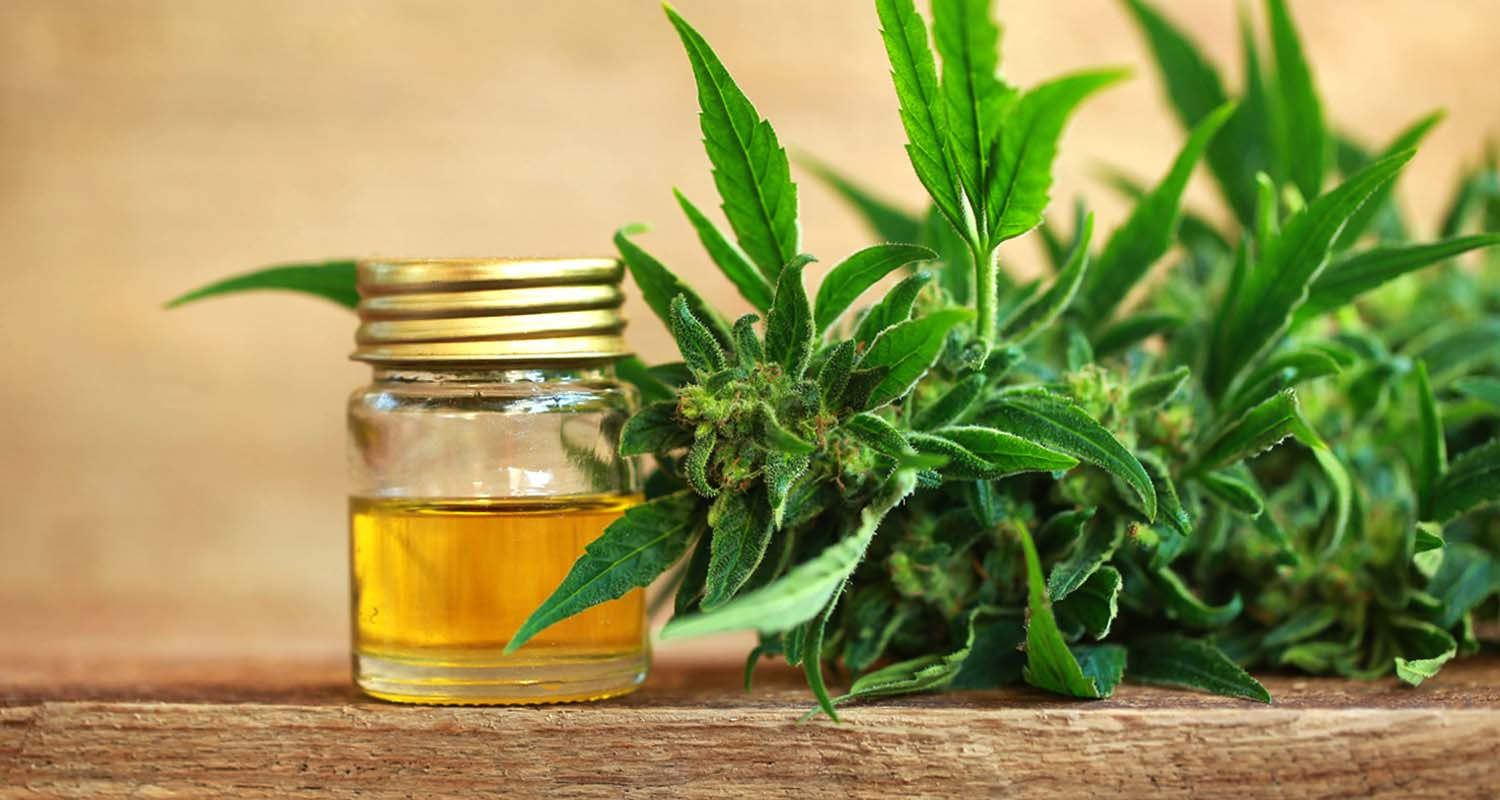 cbd oil for